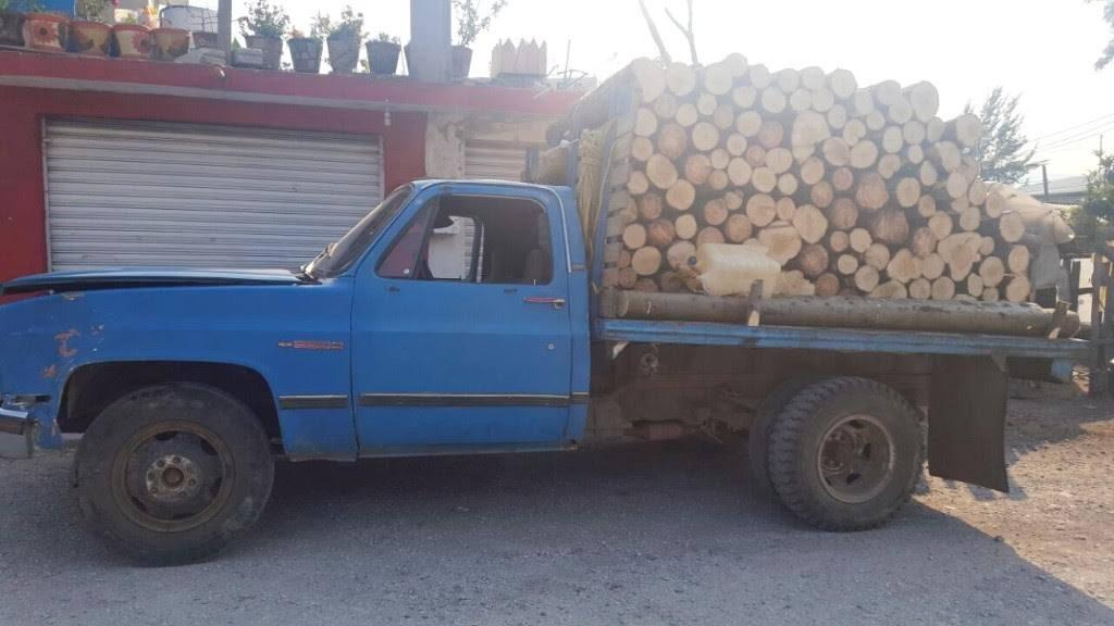 APORO Asegura SSP más de 100 rollos de madera en Áporo y  requiere a dos personas (1)