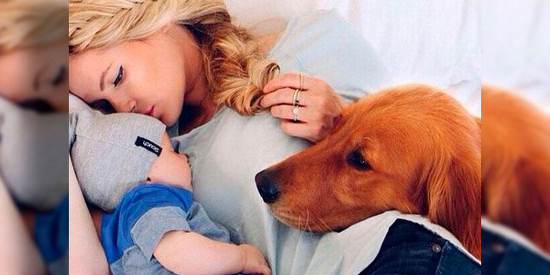 familia-perro-recien-nacido