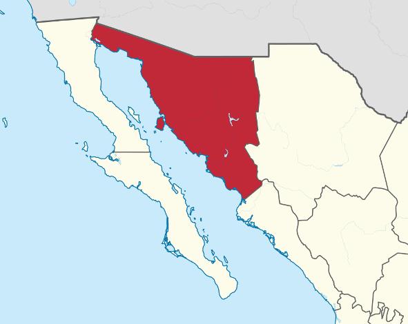 Photo of SONORA: prohiben registrar hijos con nombres como Cheyenne, Rambo, Circuncisión, Escroto