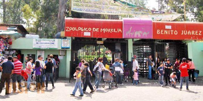 Photo of Anuncia Zoológico De Morelia Incremento En El Precio De Las Entradas