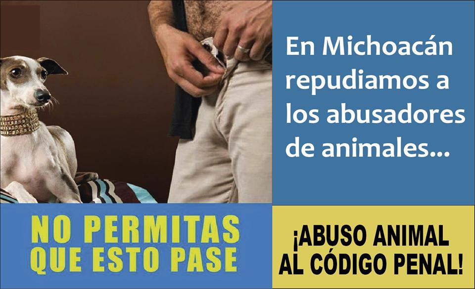 Michoacan abuso sexual a animales bestialidad