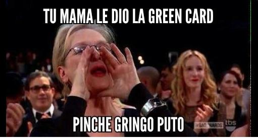 sean penn green card meme