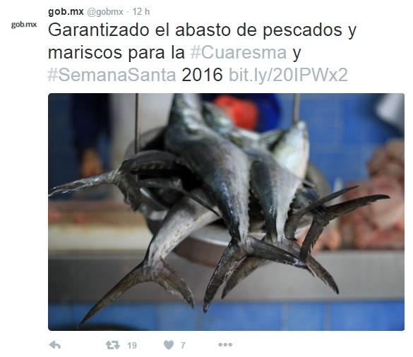 Garantizan El Abasto De Pescados Y Mariscos A Precios Accesibles #Cuaresma2016