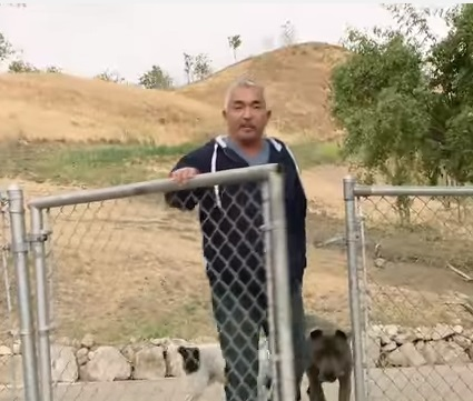El Encantador De Perros César Millán Lo Investigan Por Posible Maltrato Animal