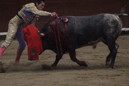 anti-taurinos-michoacan