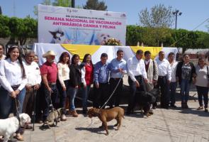 Cuitzeo Arranca Semana Nacional De Vacunación Antirrábica Canina Y Felina