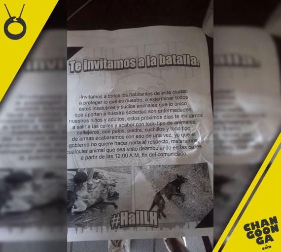 flyer-matanza-perros-Morelia-3