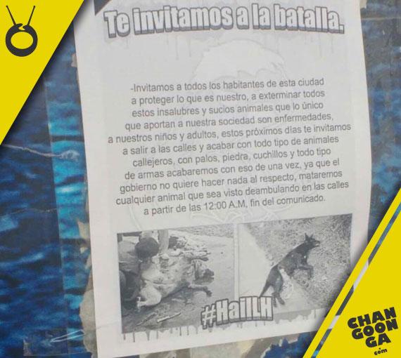 flyer-matanza-perros-Morelia-4