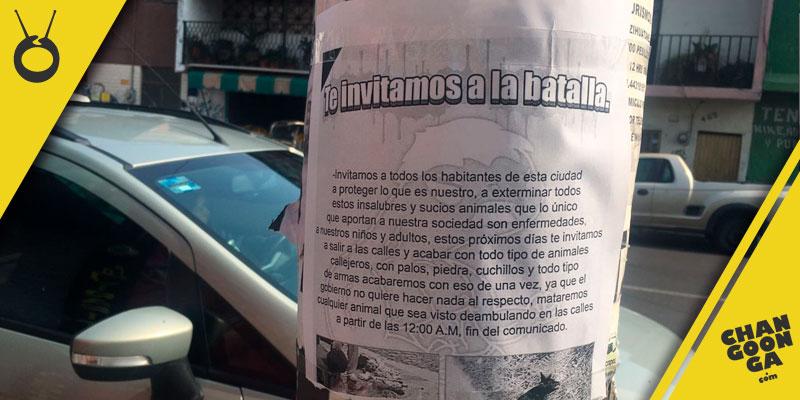 flyer-matanza-perros-Morelia