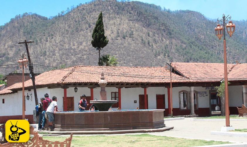 tala-clandestina-pinos-talamontes-Cuanajo-Michoacán