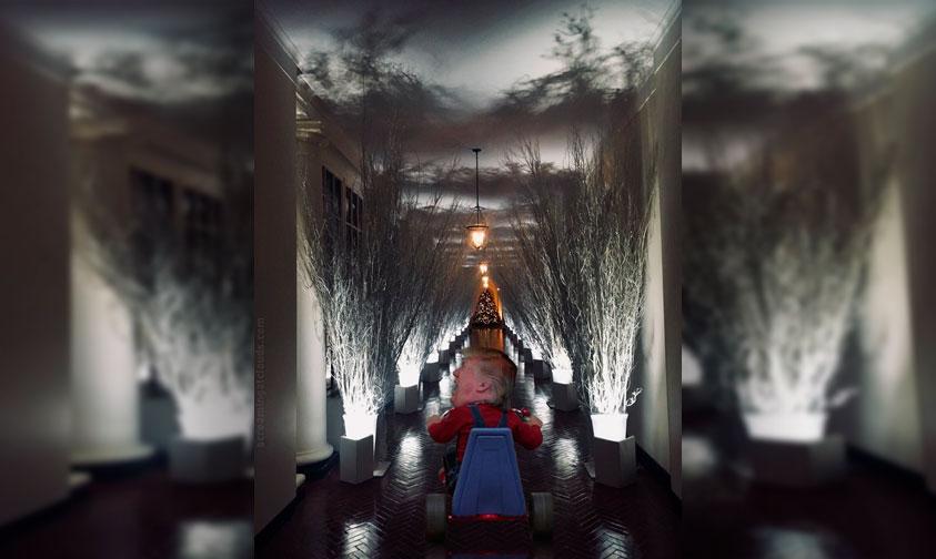 Photo of ¡Blop! Difunden Foto De La Decoración En La Casa Blanca, Y Usuarios Se Burlan Con Memes
