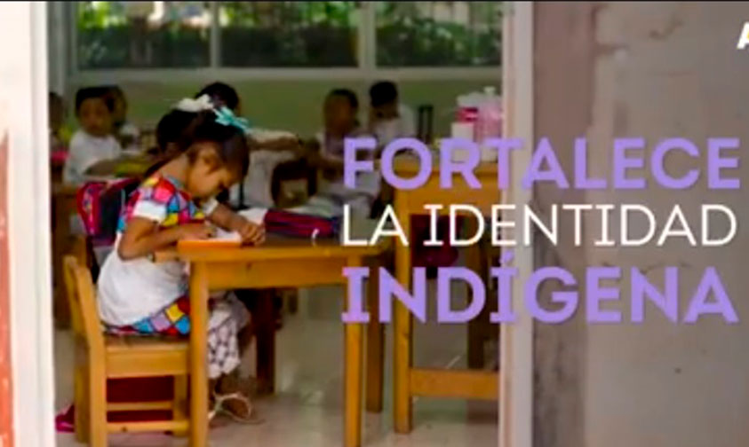 Photo of #OrgulloYucateco Primaria Sustituye Traje Típico Regional Por Uniformes (Video)