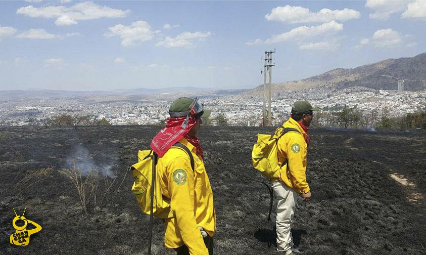 Photo of #Morelia Incendios En Loma De Santa María Son Intencionados Para Fraccionar: Semaccdet