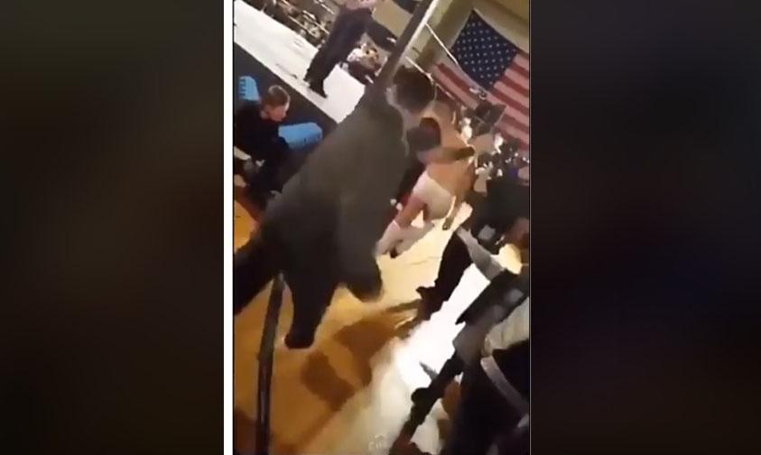 Photo of #Video Padre Golpea A Luchador Por Escupirle A Su Hija