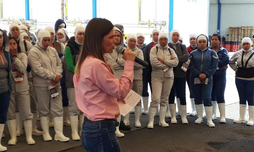 Photo of #Morelia Daniela De Los Santos No Quiere Asesoría De Alfredo Castillo Para Acabar Con La Venta De Droga