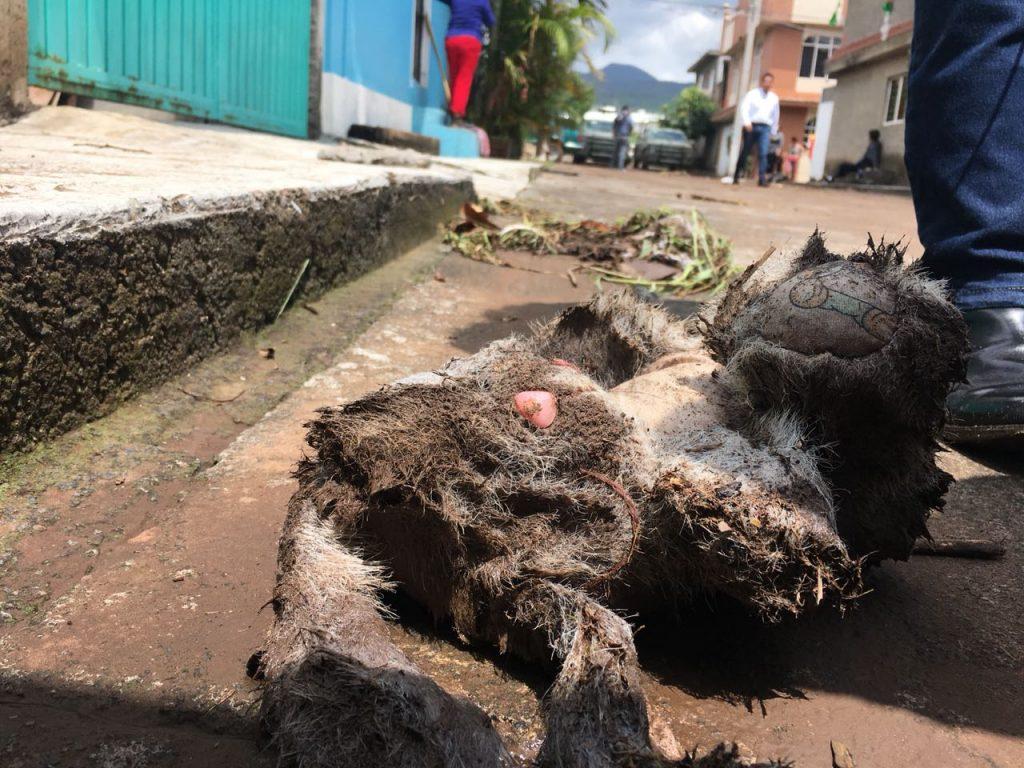 Photo of #Morelia Localizan A Niños Desaparecidos Por Lluvias En Colonia Presa De Los Reyes