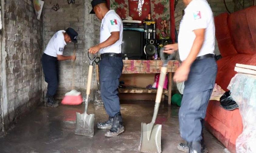 cadetes limpieza casas Quinceo Tromba