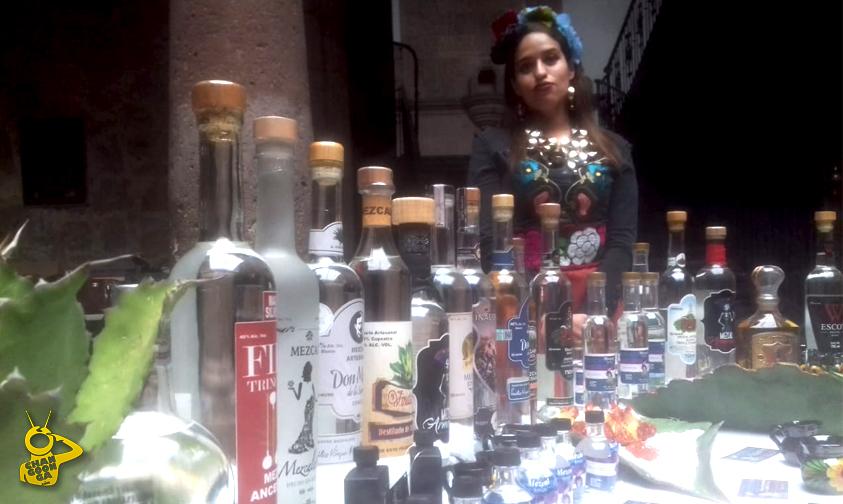 Photo of Mujeres Mezcaleras Producirán 20 Mil Litros Por Vinata En Michoacán