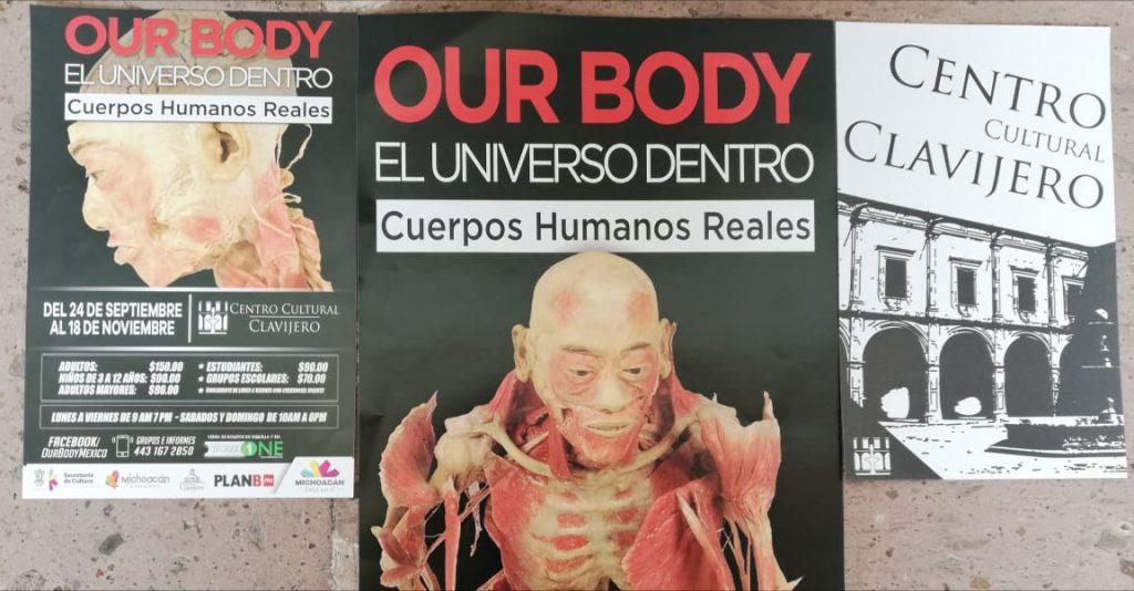 """Photo of #Morelia Impactante Exhibición De Cuerpos Humanos Reales """"Our Body"""" Llega Al Clavijero"""