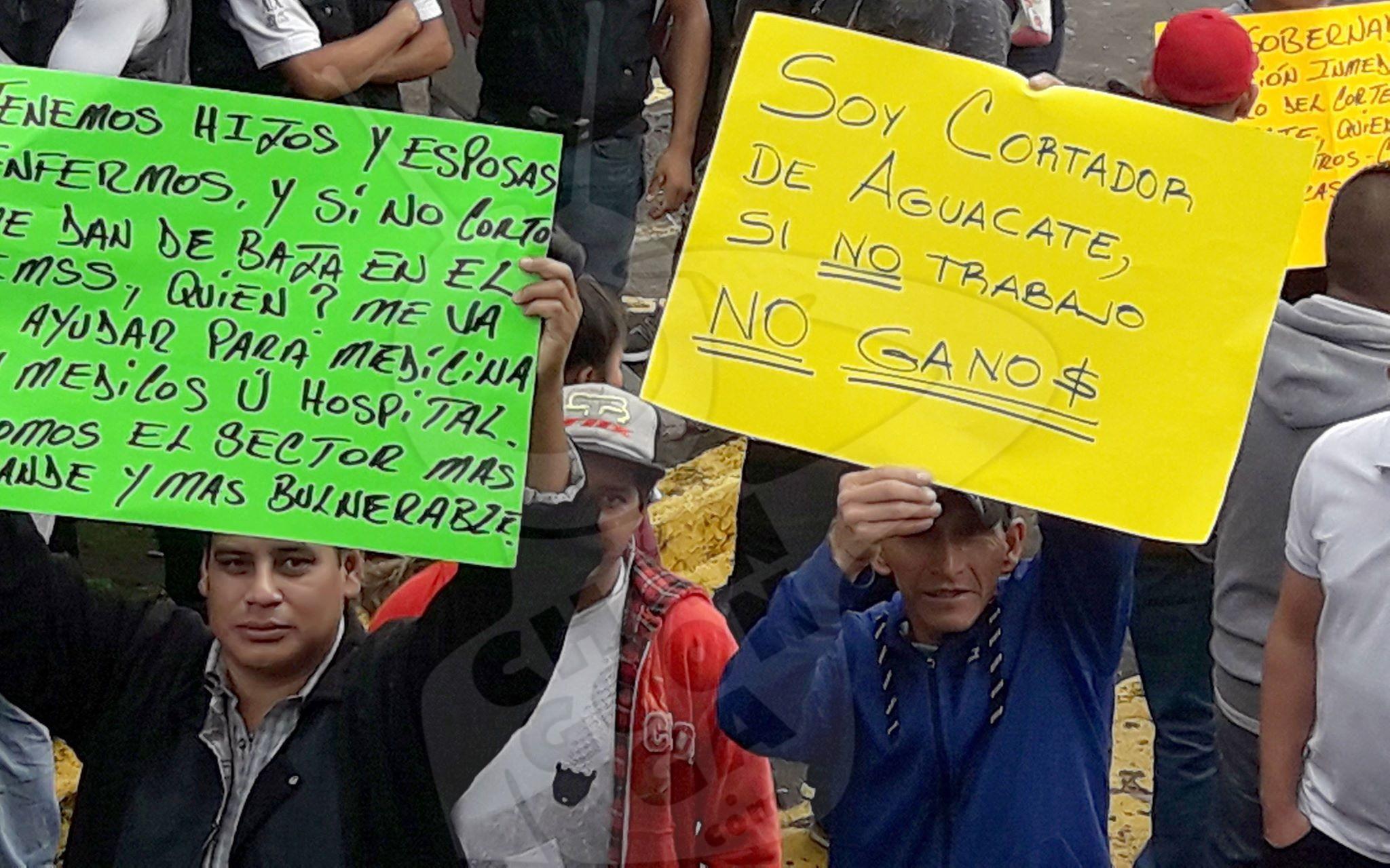 Photo of #Uruapan Cortadores De Aguacate Se Manifiestan Frente A Ayuntamiento