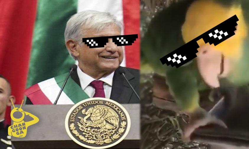Photo of #Vídeo AMLO Comparte Porra Burlona De Lorito A Americanistas
