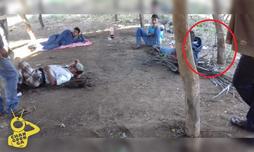 Photo of #Michoacán Fiscalía Investiga Encadenamiento De Comuneros En Aquila