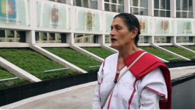 Photo of No Olvidar En Día De La Mujer A Vacas, Puercas Y Burras: Senadora De Morena