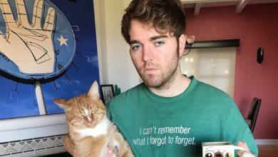 Photo of Acusan A Youtuber De Violar A Su Gato Por Lo Dicho En Un Podcast
