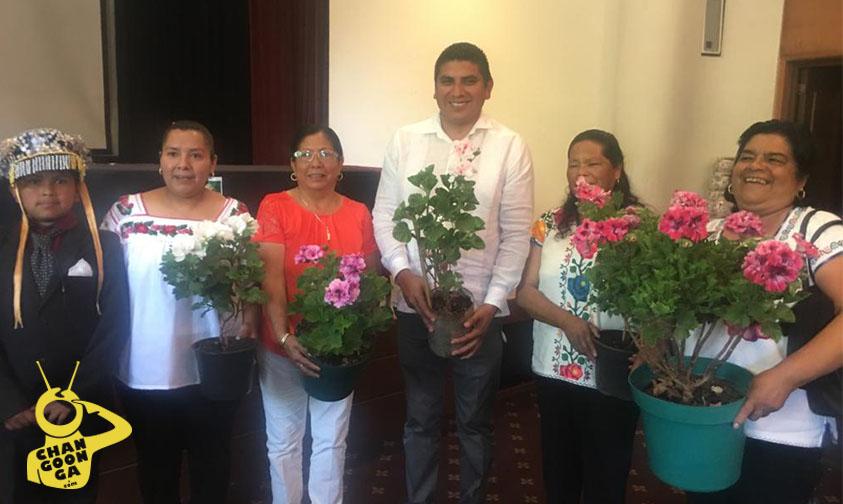 geranio-Tingambato-Michoacán mujeres a