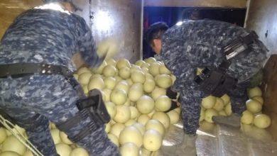 Photo of Pasa En Michoacán: Decomisan Una Tonelada De Mota Oculta Entre Melones
