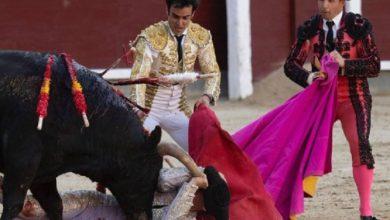 "Photo of Torero ""Bombero"" Sufre Tremenda Cornada En Plena Cara"