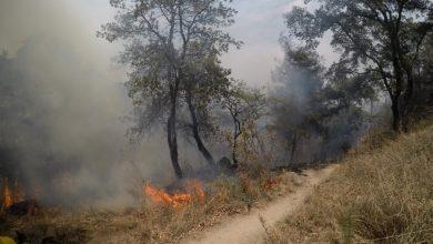 Photo of Darán Hasta Nueve Años En La Cárcel A Quien Provoque Incendios Forestales
