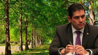Photo of #Michoacán Diputado Busca Se Castigue A Quienes Dañen Áreas Naturales Protegidas
