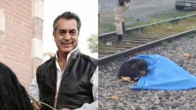 """Photo of """"Bronco"""" Adopta A """"Negro"""", Perrito Que No Quería Dejar A Su Dueño Atropellado Por Tren"""