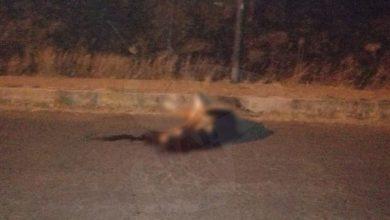 Photo of #Morelia Hombre Asesinado Atrás Del Estadio Morelos Ya Ha Sido Identificado