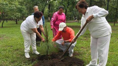 Photo of #Michoacán Comisión De Medio Ambiente Del Legislativo Ahora Sí Busca Trabajar