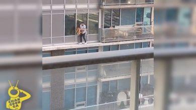 Photo of #Video Vato Persigue A Su Gato Por Cornisa De Edificio Alto, Muy Alto, Requete Alto
