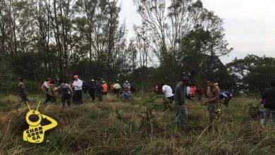 Photo of Plantan 80 Mil Árboles Con El Programa #MoreliaTeQuieroVerde