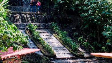 Photo of ¡Prohibido Popotes! Falta Ya No Usar Unicel Y Plásticos En Parque Nacional De Uruapan