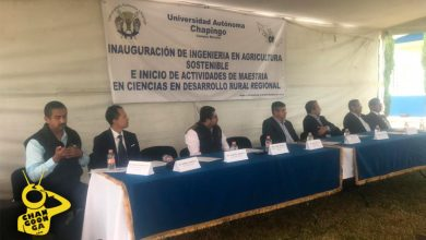 Photo of #Morelia Universidad Chapingo Contará Con  Ingeniería En Agricultura Sostenible