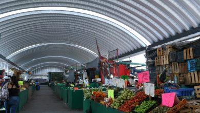 Photo of Mercaditos De Abastos, Antigua Feria Y SEP Regresarán  A Partir De Este Domingo