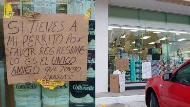 Photo of #Morelia Cuidacoches Pide Que Le Regresen Peludo Que Le Robaron En Las Tijeras