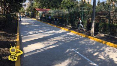 Photo of #Morelia Inauguran Lateral De Camelinas Frente A Leones Del Zoo
