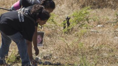 Photo of Hallan 7 Cuerpos En Guerreo; Analizan Si Pertenecen A Normalistas De Ayotzinapa