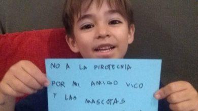 Photo of Niño De 6 Años Reparte Volantes «No A La Pirotecnia, Por Las Mascotas»