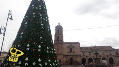 Photo of #Morelia Árbol Monumental Navideño En Riesgo De Caer A Causa Del Fuerte Viento