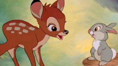 Photo of Anuncian Live Action De Bambi E Incluirá Todas Sus Aventuras