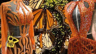 Photo of Diseñador Michoacano Prepara Vestidos De Mariposa Monarca Para Fashion Week 2020