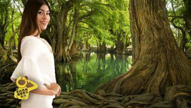 Photo of Participante De Miss Earth 2020 Asegura Que Se Puede Tomar Agua De Camécuaro