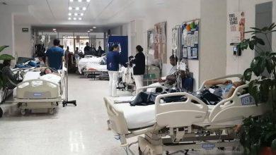 Photo of Propondrán Que Sea Ley Estar Acompañada Cuando Se Dé A Luz En Hospitales Públicos